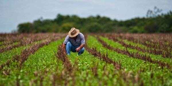 Bienes Personales genera roces entre el campo y el Gobierno