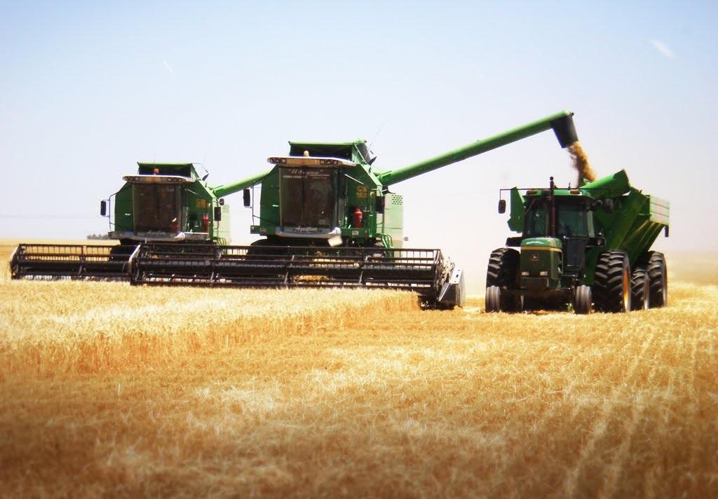 Sector agropecuario satisfecho con decisión presidencial