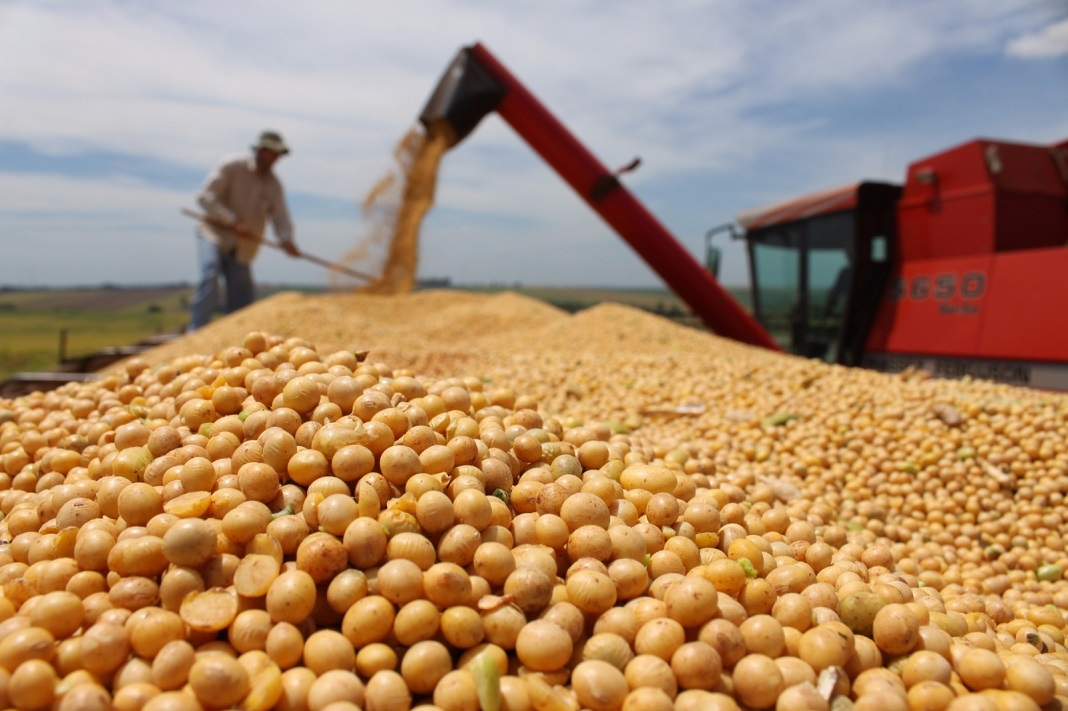Un compromiso para garantizar el abastecimiento de maíz