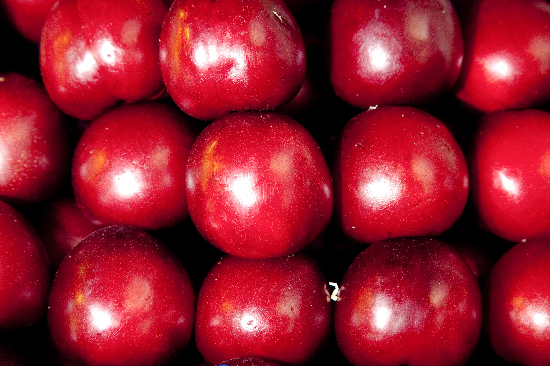 Alimentos con valor agregado incrementan 8,5% sus exportaciones