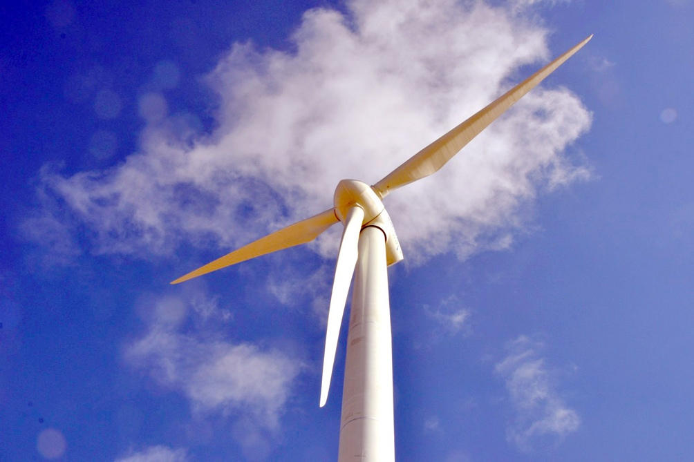 Rescinden el Proyecto de Enel Green Power del programa RenovAr