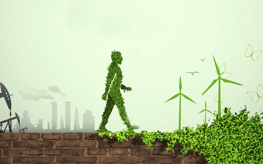 Buenbit compensará la huella de carbono que genera