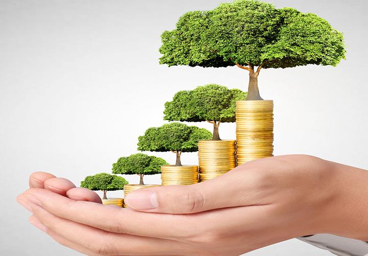 Bonos verdes regresan para financiar proyectos sociales