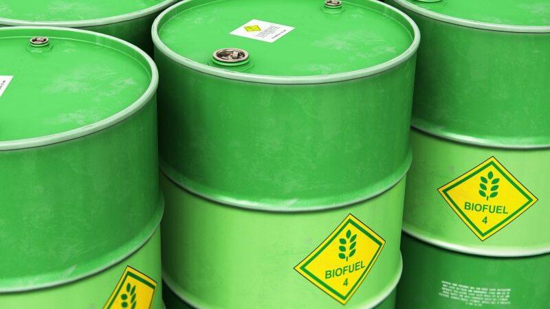 El Gobierno avanzará en Senadores con la prórroga del esquema de biocombustibles