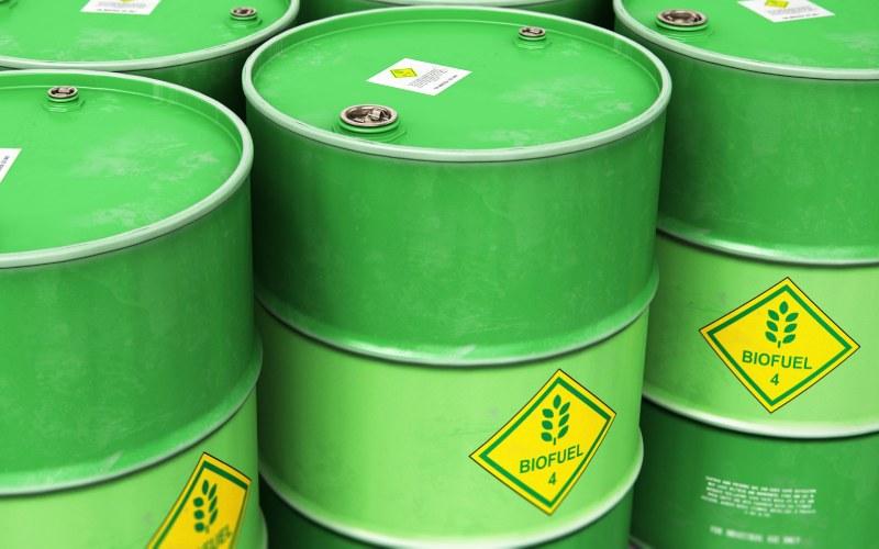 Biocombustibles: ¿Quiénes son los ganadores y perdedores de la nueva norma?