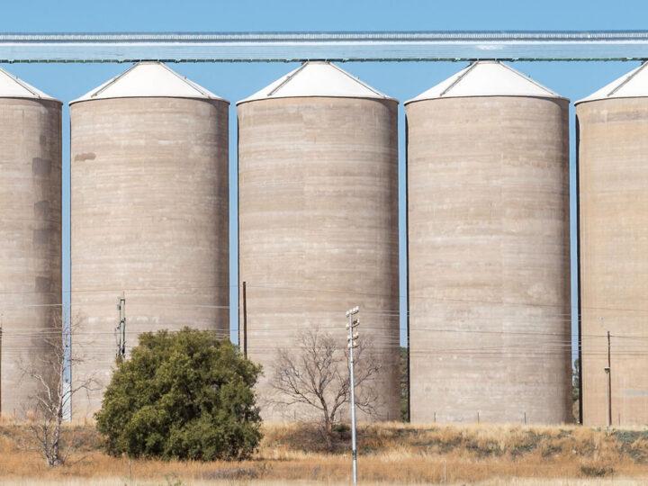 US$ 4.700 millones de la cosecha de soja esperan ser liquidados