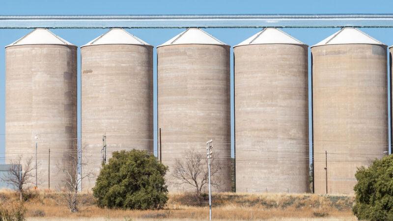 Los precios más altos en 4 años para la soja