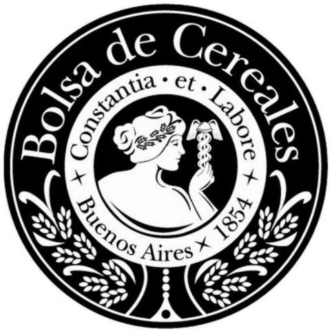 José Martins fue reelecto por unanimidad cómo presidente de la Bolsa de Cereales. Fue mediante una reunion virtual