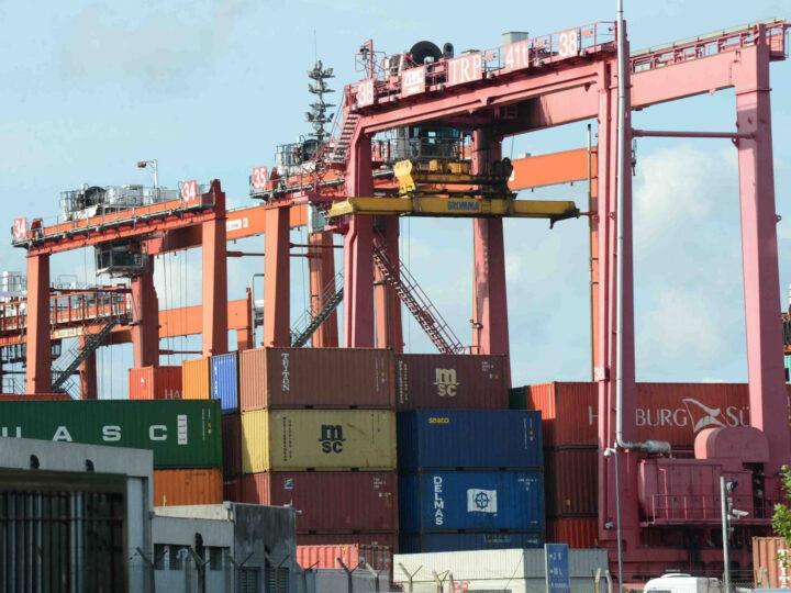 Los productos con mayor demanda que exporta Argentina