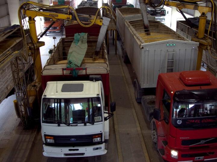 Granos secuestrados este año suman 357 toneladas