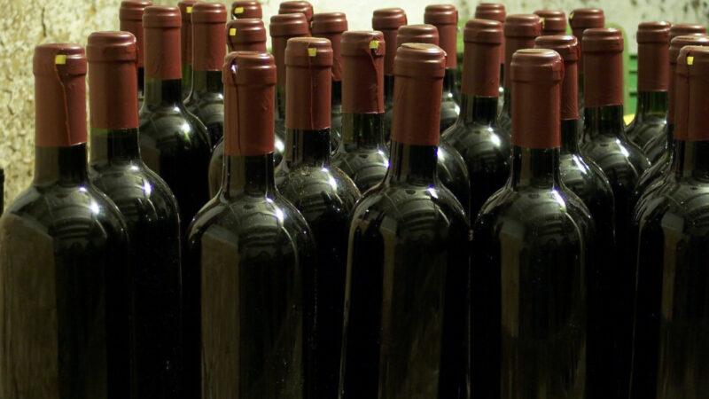 Exportaciones de vinos crecieron 5% en marzo