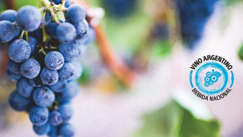 Exportaciones de vinos las mayores en 12 años