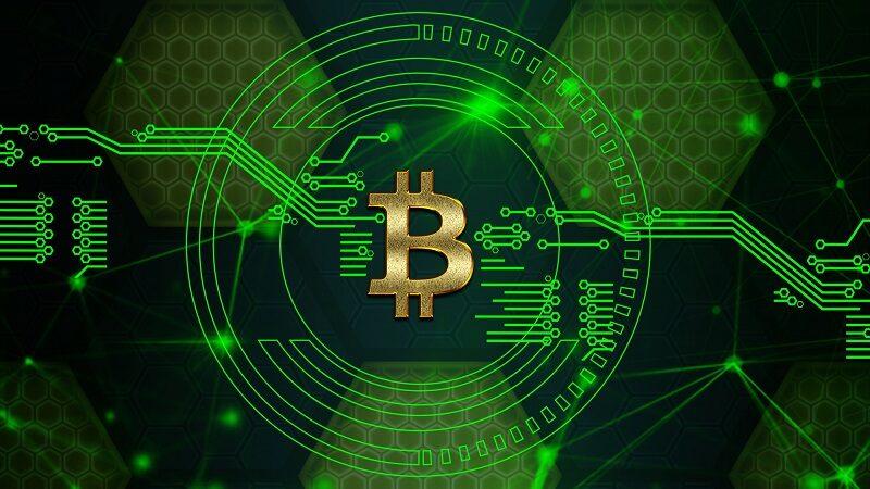 DonWeb cotiza el Bitcoin a 80 mil dólares