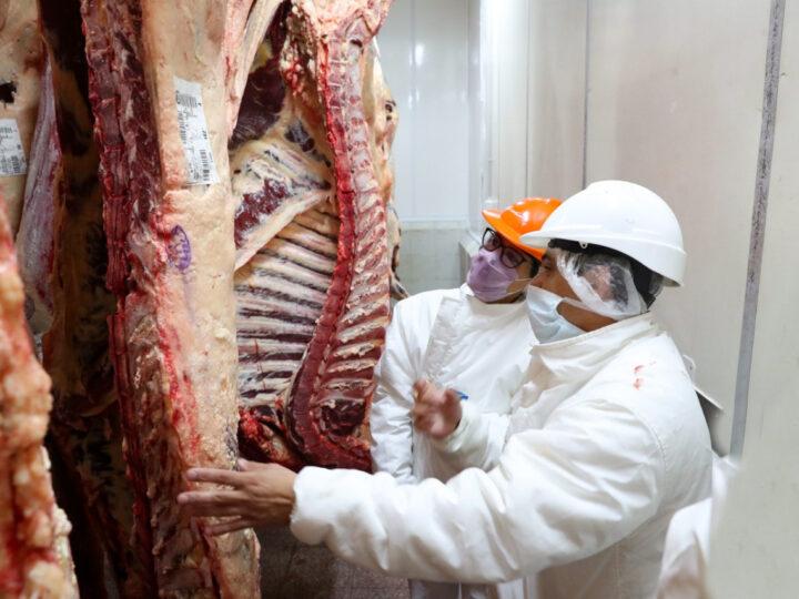 La batalla por el precio de la carne enfrenta a frigoríficos y productores