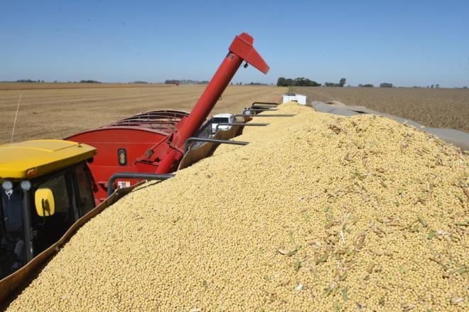 La soja aumentó 75% en un año. Llegó a US$ 532