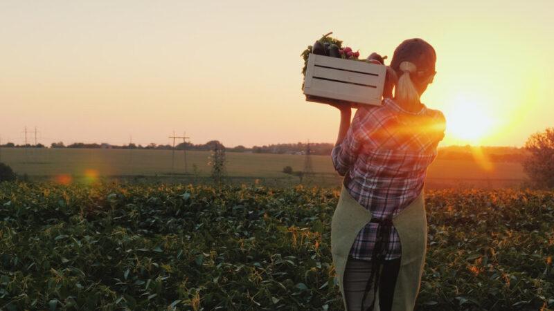 El BCIE otorgará US$50 millones para el sector agroalimentario rural argentino afectado por la crisis