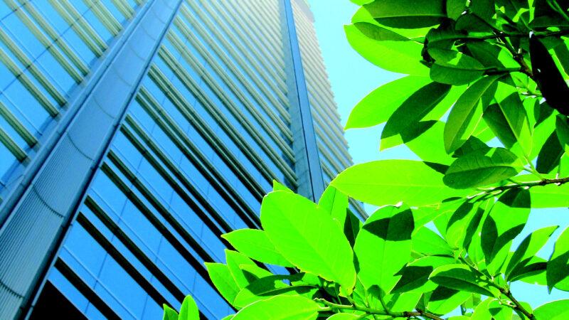 Banco Galicia profundiza sus acciones para mitigar el cambio climático