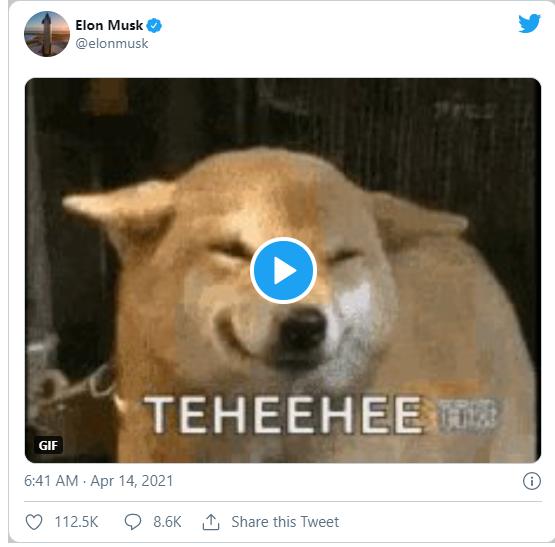 Otro tuit de Elon Musk lleva el Dogecoin un 80% arriba