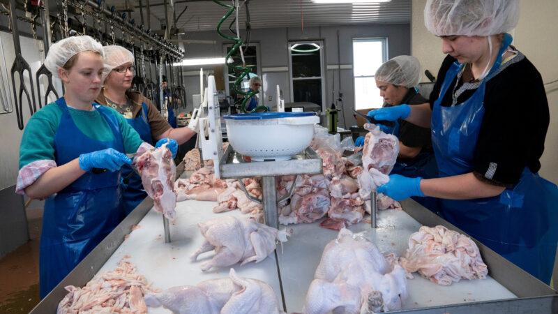 La escasez de pollo aumenta los costos para los restaurantes