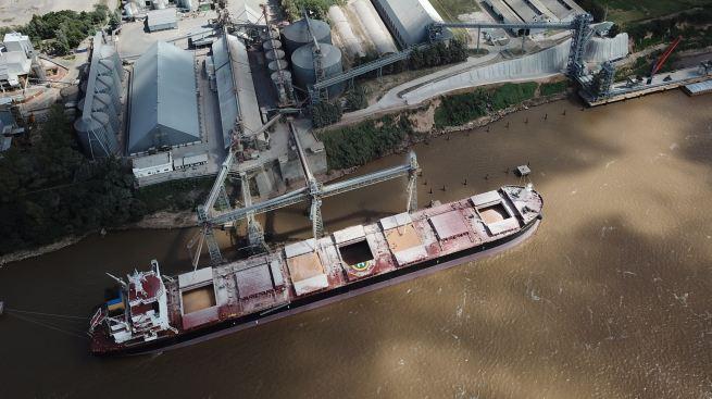 Exportaciones de trigo con récord de US$ 3.180 millones