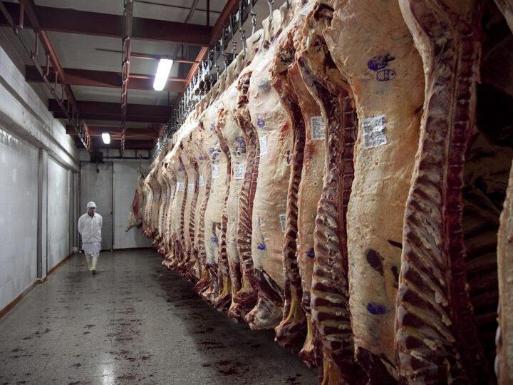 Agricultura distribuyó 28.765 toneladas de Cuota Hilton