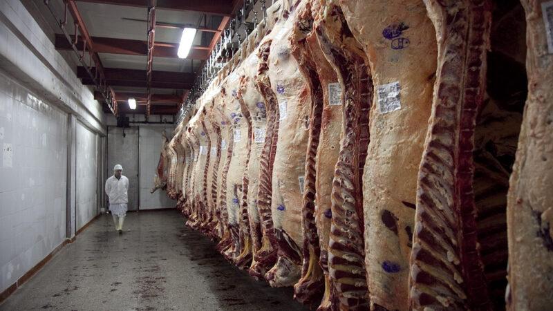En junio cayó 45% la exportación de carne