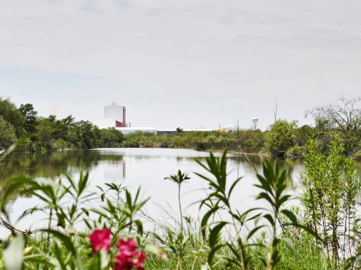 Ternium presentó su Reporte de Sustentabilidad 2020: el camino hacia un futuro sostenible