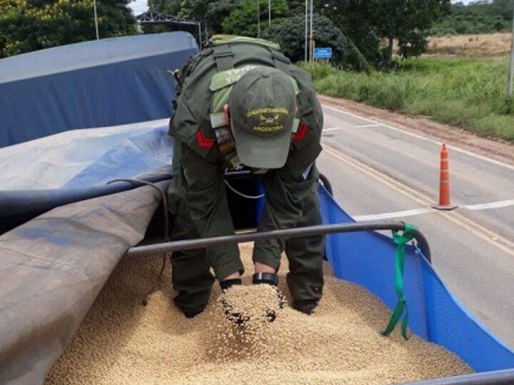 AFIP secuestró 21.000 toneladas de granos sin declarar